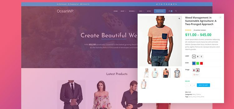 How To Enable Color Swatches in OceanWP Theme for WooCommerce Variable Product Attributes
